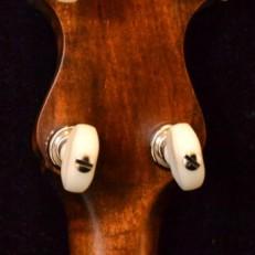 VEGA SENATOR acousticvibesmusic3