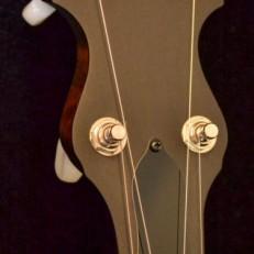 VEGA SENATOR acousticvibesmusic5