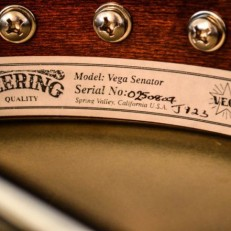 VEGA SENATOR acousticvibesmusic9