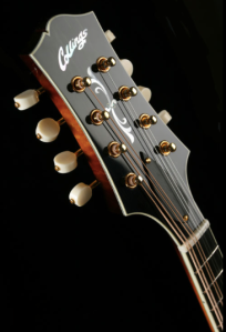 collings mt2 headstock