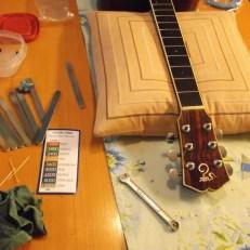 jim sergovic amateur luthier