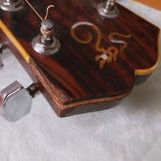 santa cruz missing headstock binding