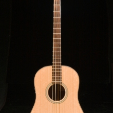 SCGC True Acoustic Bass 2