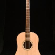 SCGC True Acoustic Bass 2