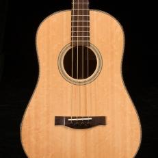 SCGC True Acoustic Bass 3