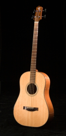 SCGC True Acoustic Bass 4