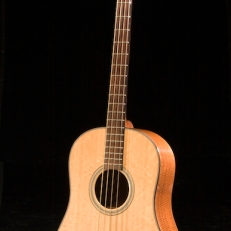 SCGC True Acoustic Bass 4