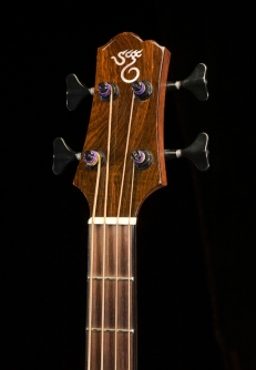 SCGC True Acoustic Bass 6