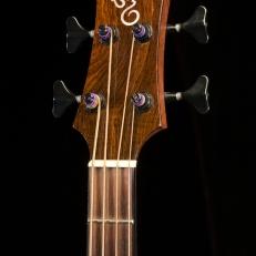 SCGC True Acoustic Bass 6