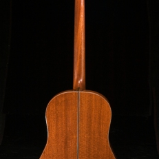 SCGC True Acoustic Bass 7