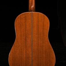 SCGC True Acoustic Bass 8