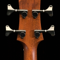 SCGC True Acoustic Bass 9