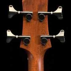 SCGC True Acoustic Bass 9