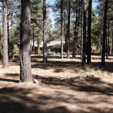 14-flagstaff-arboretum