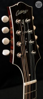 collings-mt2-o-by-kathryn-butler-3