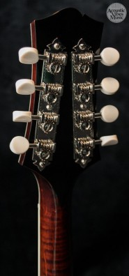 collings-mt2-o-by-kathryn-butler-5