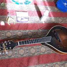 collings-before-behlen-1