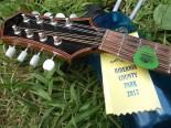 mcnemar mandolin hibernia fiddlers picnic 2017