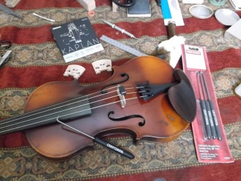 yorke violin with d'addario kaplan vivo strings