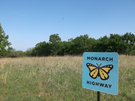 Kansas Monarch Highway