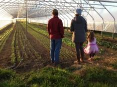 Two Gander Farm 4