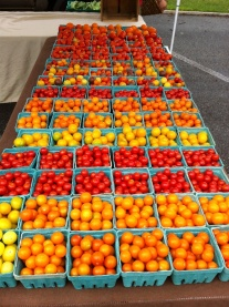 Two Gander Farm Tomatoes